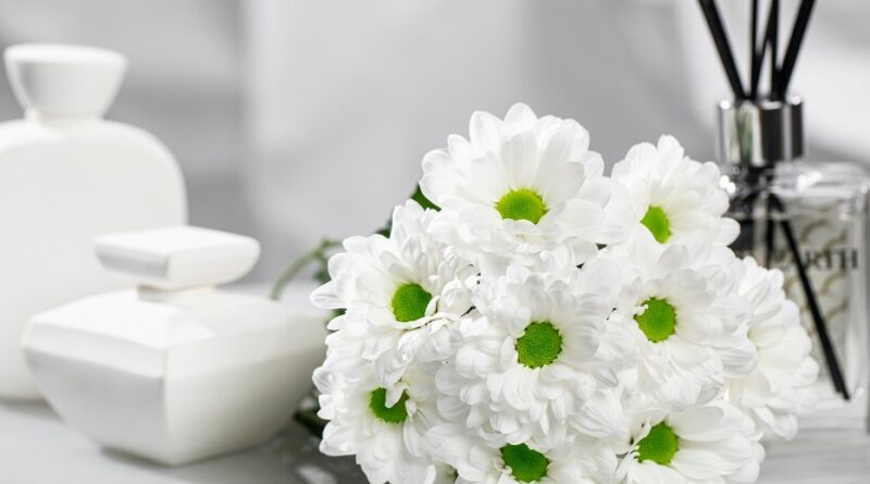 Novedades en el sector ornamental y flor de corte este 2021